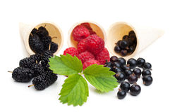 Blueberries and raspberry Royalty Free Stock Image