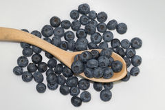 Blueberries. Raw blueberries in wooden spoon on white background. Close up Stock Photography