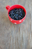 Blueberries in red cup Royalty Free Stock Photos