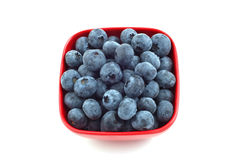Blueberries in red dish. Whole ripe blueberries in square red dish isolated on white background Stock Images