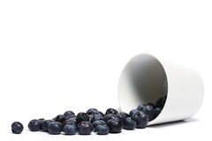 Blueberries rolling from a fell over cup Stock Photos