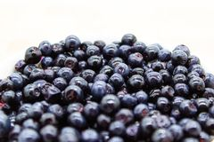 Blueberries in a rounded bowl on a wooden table royalty free stock photo