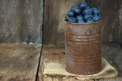 Blueberries in rusty tin can. Ripe blueberries in rusty tin can on burlap and rustic wood Stock Images