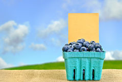 Blueberries for Sale Stock Image