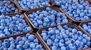 Blueberries for sale Stock Photography