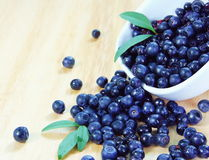 Blueberries Scattered over Wooden Table Royalty Free Stock Images