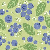 Blueberries seamless pattern. Berries with leaves and flowers on shabby background. Original simple flat illustration. Shabby style vector illustration