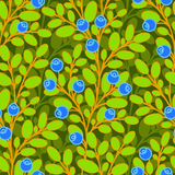 Blueberries Seamless Pattern Stock Images