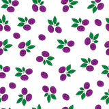 Blueberries seamless pattern on white background. Hand drawn illustration. Vector. Stock Photos