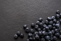 Blueberries on a shale surface. High quality close up photo of blueberries on a black shiver surface. Blueberries are one of the most famous useful berries, full Stock Image