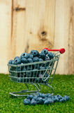 Blueberries in a shopping cart Stock Photography
