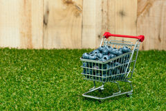 Blueberries in a shopping cart Stock Photo
