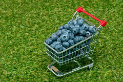 Blueberries in a shopping cart Royalty Free Stock Images