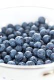 Blueberries in siev Stock Photos