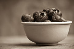 Blueberries in a Small Bowl. Bluberries in a Small Bowl, Warm-Tone Black & White royalty free stock images