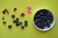 Blueberries in small white plate Royalty Free Stock Image