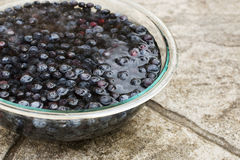 Blueberries Soaking in a Glass Bowl of Water. Many Blueberries Soaking in a Large Glass Bowl of Water Royalty Free Stock Photography