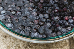 Blueberries Soaking in a Glass Bowl of Water. Many Blueberries Soaking in a Large Glass Bowl of Water Royalty Free Stock Image