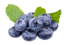 Blueberries. Some fresh blueberries with mint royalty free stock images