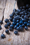 Blueberries. Some blueberries in a small bucket on wooden background Stock Images
