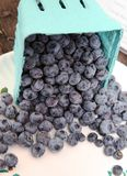 Blueberries Spilling at Market Stock Photos