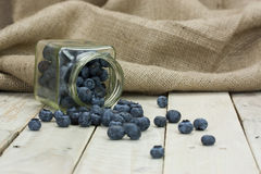 Blueberries spilt from a jar Royalty Free Stock Images