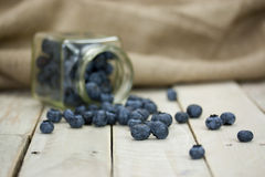 Blueberries spilt from a jar Royalty Free Stock Photo