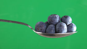 Blueberries on a Spoon Stock Photography
