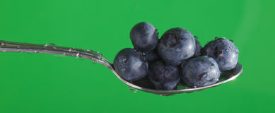 Blueberries on a Spoon Royalty Free Stock Photography