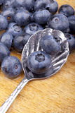 Blueberries on a spoon Royalty Free Stock Photos
