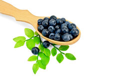 Blueberries in a spoon with a leaf Royalty Free Stock Photo