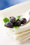 Blueberries on spoon Royalty Free Stock Photography