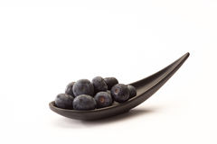 Blueberries on a spoon. Some blueberries on a spoon on a white background Stock Image