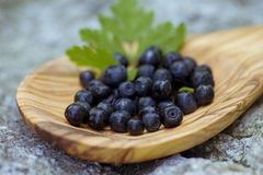 Blueberries in spoon Stock Photos