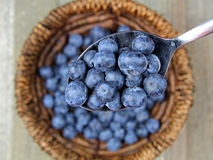 Blueberries. In a spoon on a wooden board Royalty Free Stock Photo
