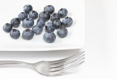 Blueberries on a square plate Stock Photo