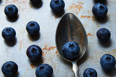 Blueberries on steel plate and spoon Stock Photography