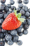 Blueberries and strawberries. On a white background Stock Photos