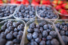 Blueberries and strawberries Royalty Free Stock Photo