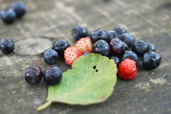 Blueberries and strawberries near the green leaf. On a wooden table Stock Photography