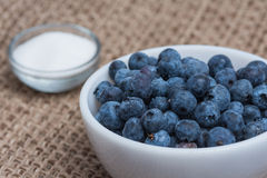 Blueberries and sugar. Blueberries with a bowl of sugar Stock Photo