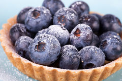 Blueberries tart on the blue background Royalty Free Stock Images
