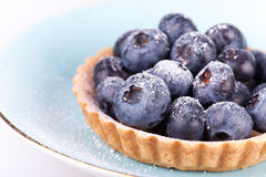 Blueberries tart on the blue plate Stock Image