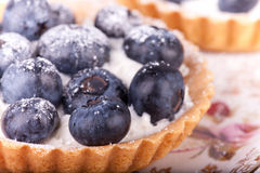 Blueberries tarts on the plate Stock Images