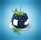 Blueberries tea cup Royalty Free Stock Image