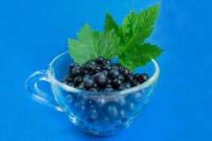 Blueberries in a transparent bowl on a blue background. royalty free stock photos