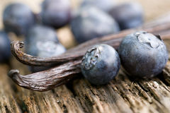 Blueberries, vanilla beans Stock Photography