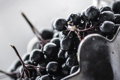 Blueberries in vase royalty free stock images