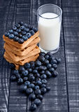 Blueberries and waffles on blue wood with milk glass Stock Images
