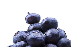 Blueberries with water drops Stock Photos